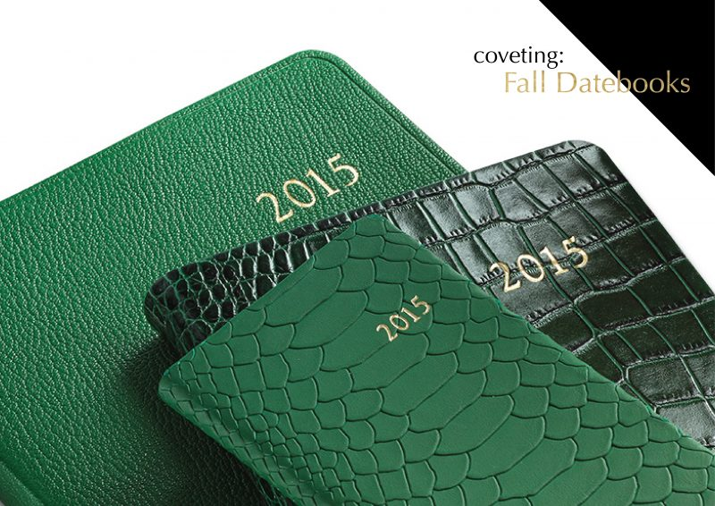 Currently Coveting: Datebooks from Graphic Image
