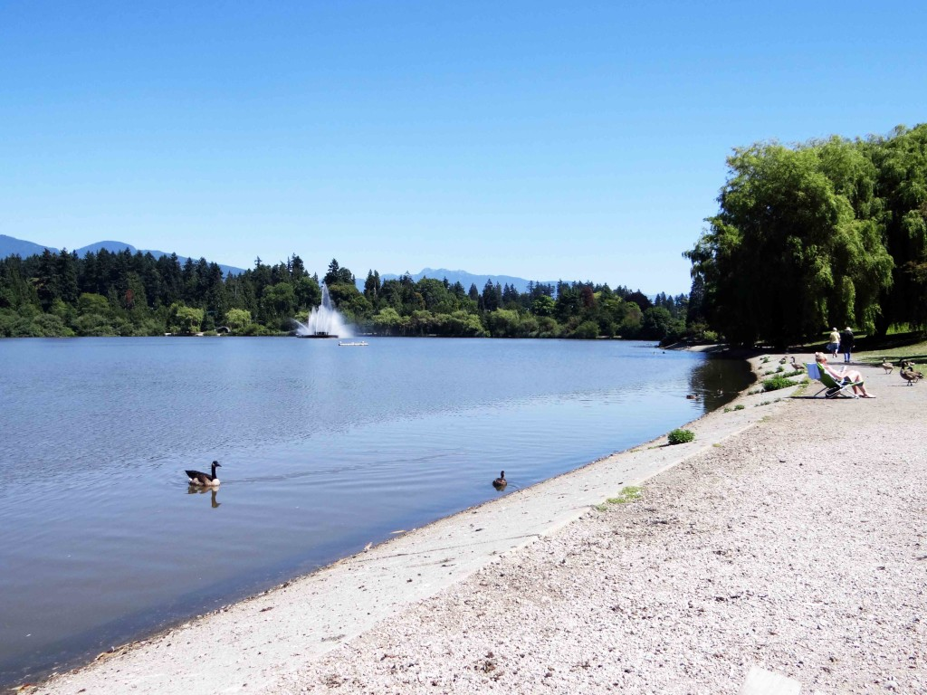 Travel-Where-To-Go-In-Vancouver-Stanley-Park