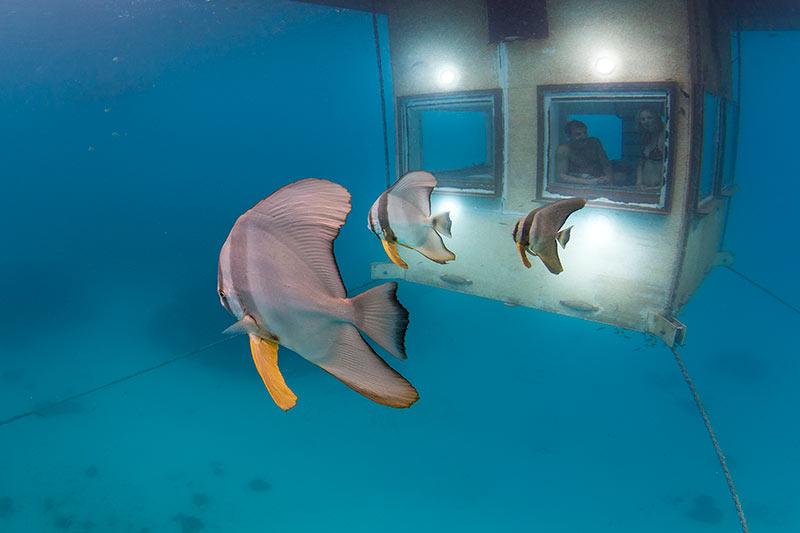 Underwater-Hotel-Room-The-Manta-Resort-Travel-Ideas