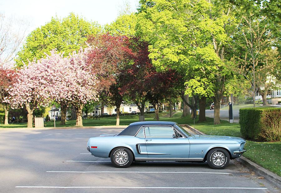 Blue-Vintage-Mustang-Niagara-On-The-Lake