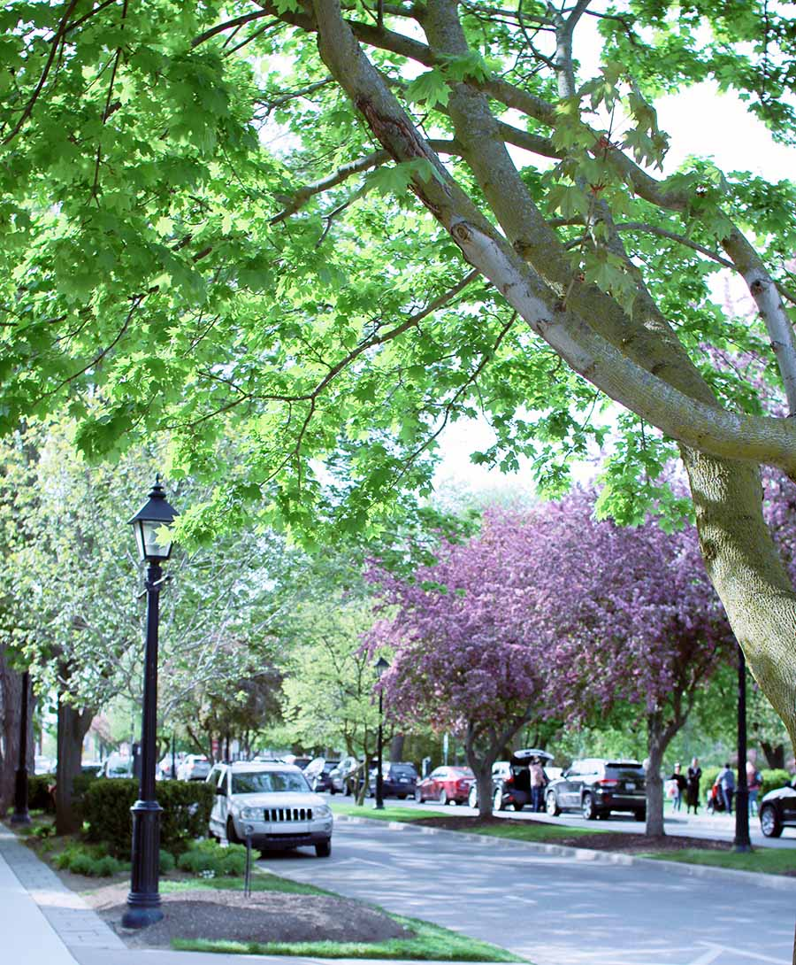 Niagara-On-The-Lake-Ontario-Canada-Travel-