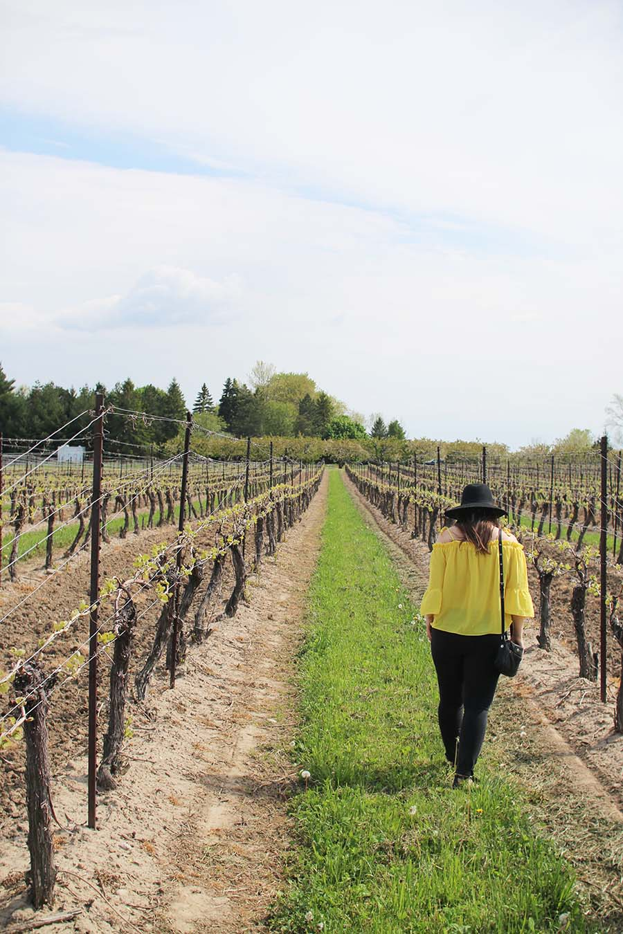 Peller-Estates-Winery-Niagara-On-The-Lake-Ontario