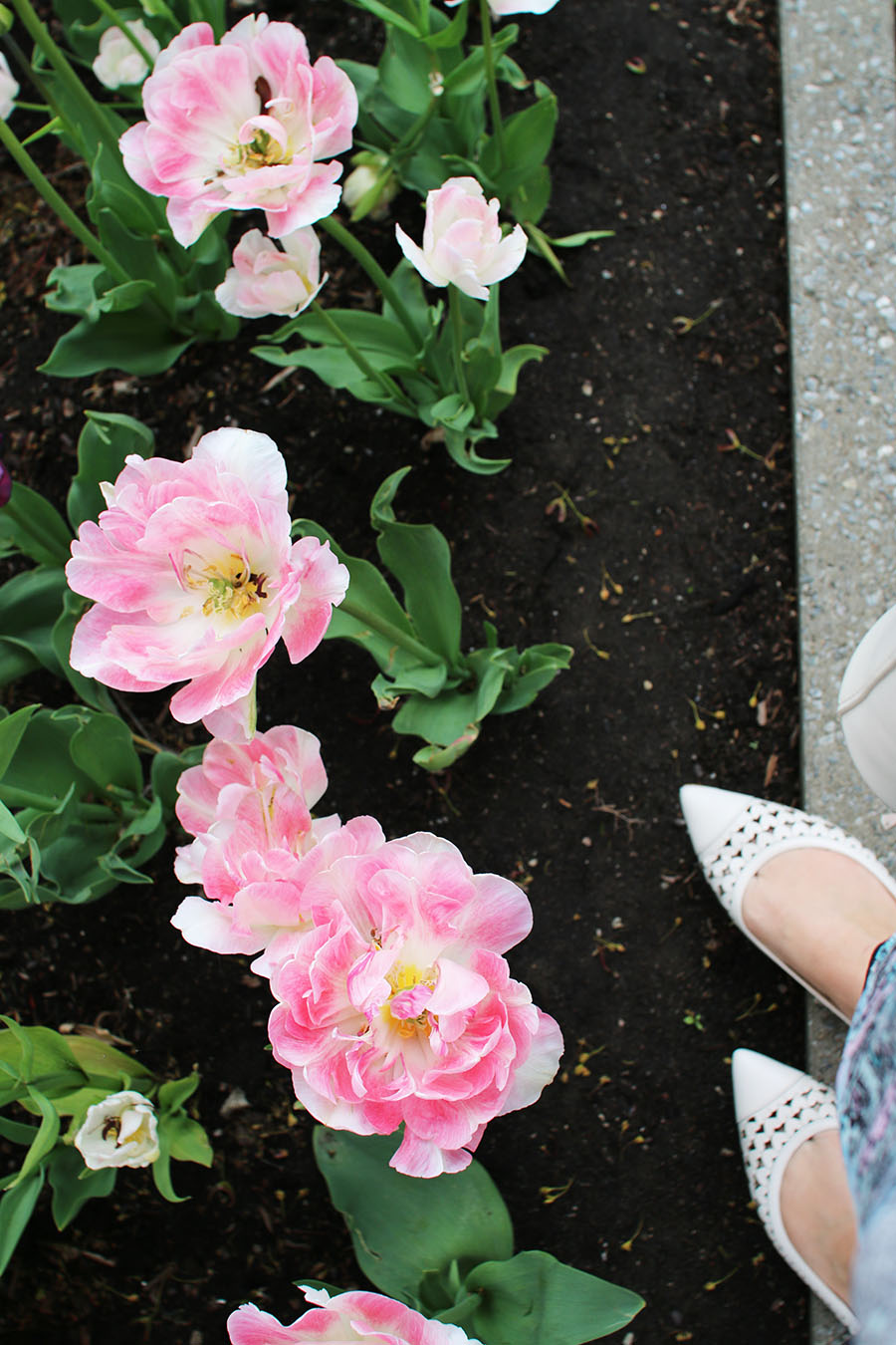 pink-tulips-and-spring-summer-shoes
