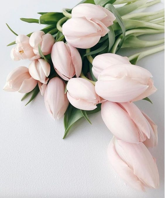Flowers-Blush-Pink-Tulips-Wedding-Color-Inspiration