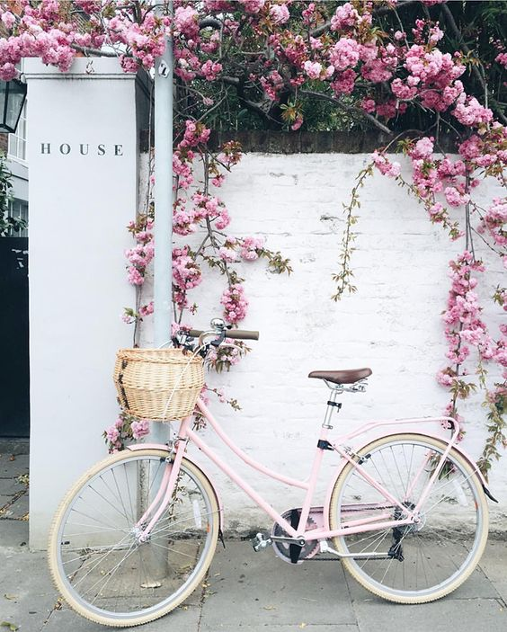 pretty-things-white-cruiser-bike-pink-florals-color-inspiration