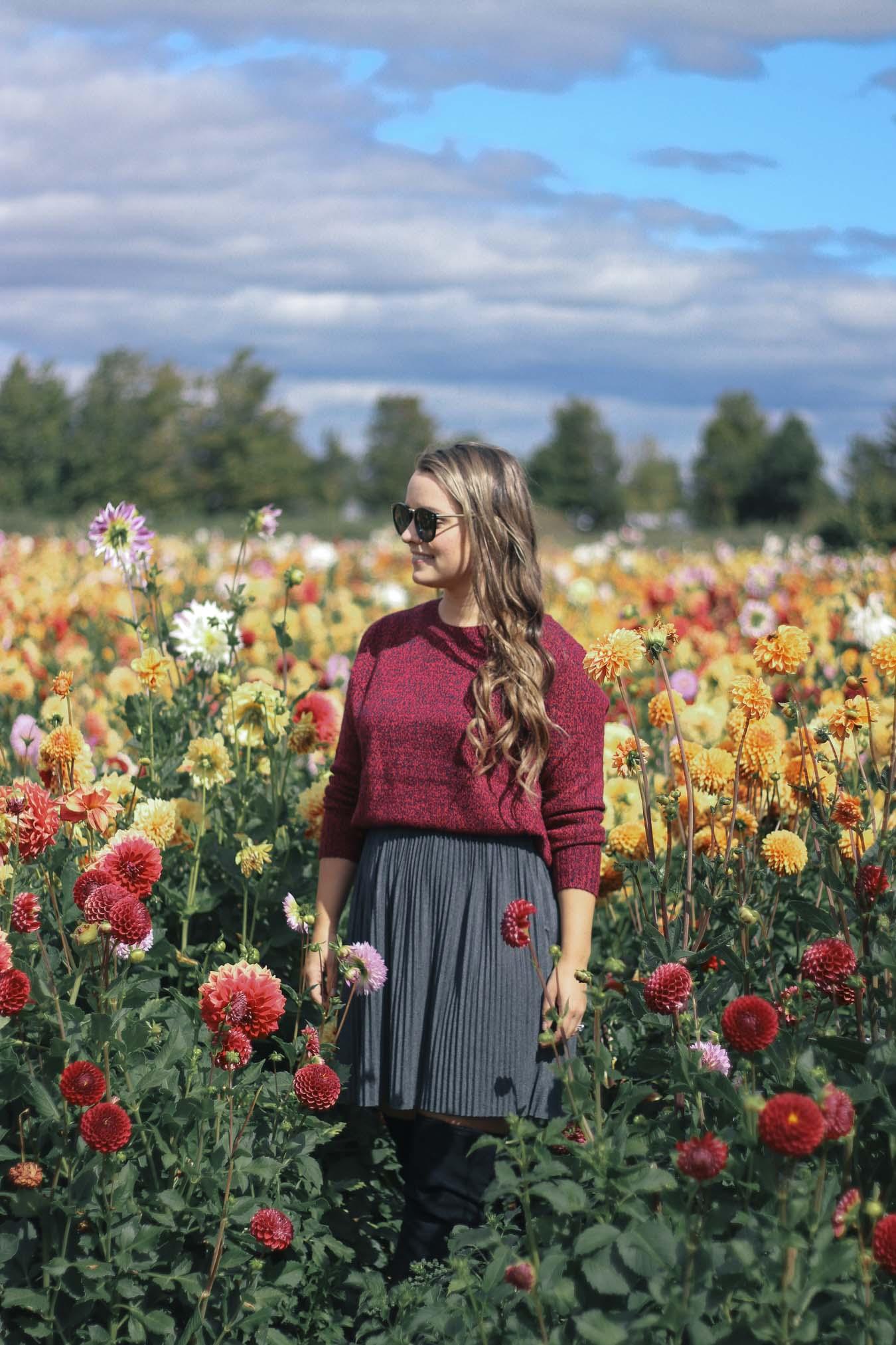 Outfit Dahlia Flower Fields Near Toronto A Side Of